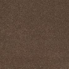 Shaw Floors Caress By Shaw Cashmere I Pebble Creek 00706_CCS01