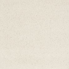 Shaw Floors Caress By Shaw Cashmere Iv Icelandic 00100_CCS04