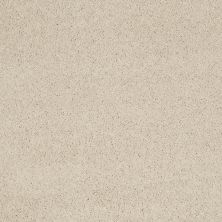 Shaw Floors Caress By Shaw Cashmere Iv Cheviot 00104_CCS04