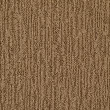 Shaw Floors Caress By Shaw Linenweave Southern Andes 00202_CCS16