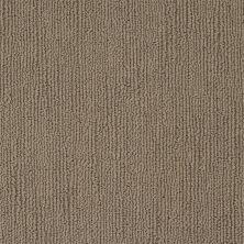 Shaw Floors Caress By Shaw Linenweave Tibetan Plateau 00504_CCS16