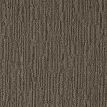 Shaw Floors Caress By Shaw Linenweave Alaskan Musk 00506_CCS16