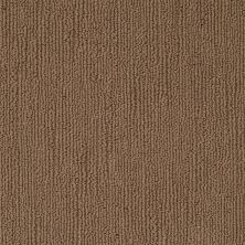 Shaw Floors Caress By Shaw Linenweave Great Plains 00705_CCS16