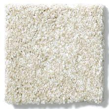 Shaw Floors Caress By Shaw Milford Sound Soft Fleece 00101_CCS33