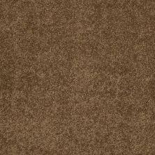 Shaw Floors Caress By Shaw Cashmere Classic I Tobacco Leaf 00723_CCS68