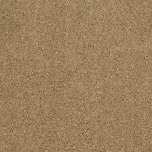 Shaw Floors Caress By Shaw Cashmere Classic II Navajo 00703_CCS69