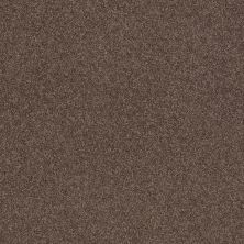 Shaw Floors Caress By Shaw Cashmere Classic II Spring – Wood 00725_CCS69