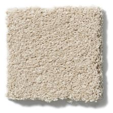 Shaw Floors Caress By Shaw Cashmere Classic III Suede 00127_CCS70