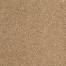 Shaw Floors Caress By Shaw Cashmere Classic III Brass Lantern 00222_CCS70