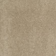 Shaw Floors Caress By Shaw Cashmere Classic III Pecan Bark 00721_CCS70