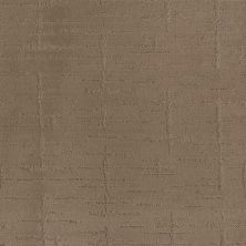 Shaw Floors Caress By Shaw Rustique Vibe Raw Wood 00720_CCS72