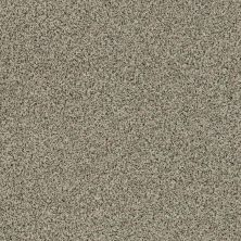 Shaw Floors Caress By Shaw Angora Classic I Spindle 0751A_CCS81
