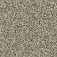 Shaw Floors Caress By Shaw Angora Classic II Dartmoor 0136A_CCS82