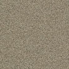 Shaw Floors Caress By Shaw Angora Classic II Raw Sugar 0252A_CCS82