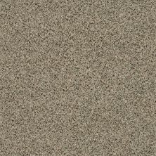 Shaw Floors Caress By Shaw Angora Classic III Wensleydale 0733A_CCS83