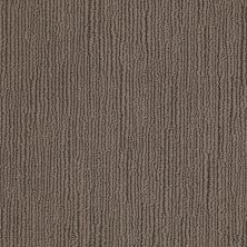 Shaw Floors Caress By Shaw Linenweave Classic Spring-wood 00725_CCS85