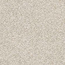 Shaw Floors Caress By Shaw Devon Classic II Breton 0140B_CCS94
