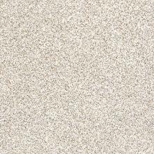 Shaw Floors Caress By Shaw Devon Classic II Valley 0141B_CCS94