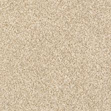 Shaw Floors Caress By Shaw Devon Classic II Toasted Grain 0241B_CCS94