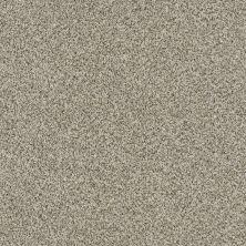 Shaw Floors Caress By Shaw Devon Classic II Drizzle 0340B_CCS94