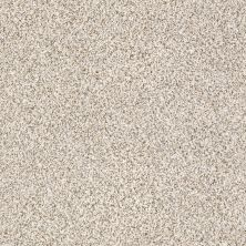 Shaw Floors Caress By Shaw Devon Classic II Heath 0540B_CCS94