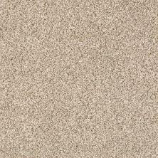 Shaw Floors Caress By Shaw Devon Classic II Cavern 0740B_CCS94