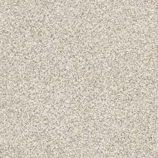 Shaw Floors Caress By Shaw Devon Classic Iv Breton 0140B_CCS96