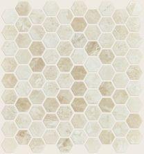 Shaw Floors Ceramic Solutions Rio Hex Mosaic Impero Reale 00200_CS04Z