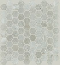 Shaw Floors Ceramic Solutions Rio Hex Mosaic Ritz Grey 00500_CS04Z