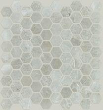 Shaw Floors Ceramic Solutions Rio Hex Mosaic Ritz Grey 00500_CS04Z