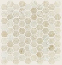 Shaw Floors Ceramic Solutions Rio Hex Plsh Mosaic Impero Reale 00200_CS05Z