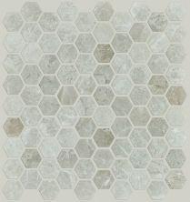 Shaw Floors Ceramic Solutions Rio Hex Plsh Mosaic Ritz Grey 00500_CS05Z