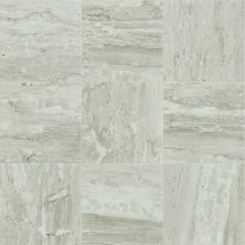 Shaw Floors Ceramic Solutions Cameo 13 Jasper 00700_CS07X