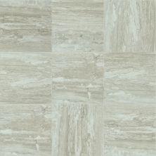 Shaw Floors Ceramic Solutions Cameo 17 Jasper 00700_CS08X