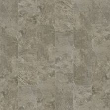 Shaw Floors Ceramic Solutions Artisan 12×24 Warm Grey 00570_CS09V