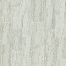 Shaw Floors Ceramic Solutions Cameo 12×24 Agate 00500_CS09X
