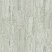 Shaw Floors Ceramic Solutions Cameo 12×24 Jasper 00700_CS09X