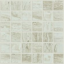 Shaw Floors Ceramic Solutions Cameo Mosaic Agate 00500_CS10X