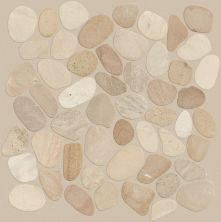 Shaw Floors Ceramic Solutions Pebble Sliced Driftwood Tan 00200_CS13L