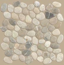 Shaw Floors Ceramic Solutions Pebble Honed Vitality Mica 00155_CS16L