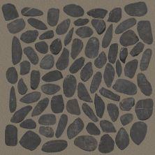 Shaw Floors Ceramic Solutions Pebble Honed Volga Black 00900_CS16L