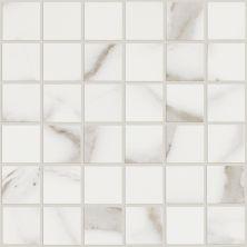 Shaw Floors Ceramic Solutions Glacier Mosaic Grey 00105_CS17P
