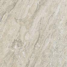 Shaw Floors Ceramic Solutions Geneva 12×12 Ceniza 00550_CS18P