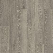 Shaw Floors Ceramic Solutions Edinburg 8×48 Tobacco 00700_CS19W