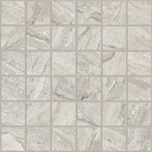 Shaw Floors Ceramic Solutions Geneva Mosaic Ceniza 00550_CS22P