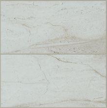 Shaw Floors Ceramic Solutions Riviera 8×16 Chrome 00100_CS23P