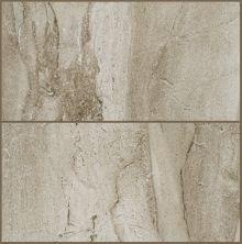 Shaw Floors Ceramic Solutions Riviera 8×16 Element 00700_CS23P