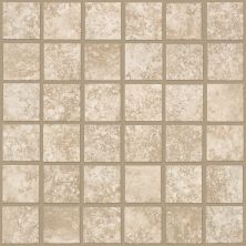 Shaw Floors Ceramic Solutions Sierra Madre Mosaic Sandstone 00200_CS24L