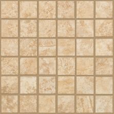 Shaw Floors Ceramic Solutions Sierra Madre Mosaic Canyon 00220_CS24L
