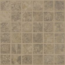 Shaw Floors Ceramic Solutions Sierra Madre Mosaic Reservoir 00350_CS24L